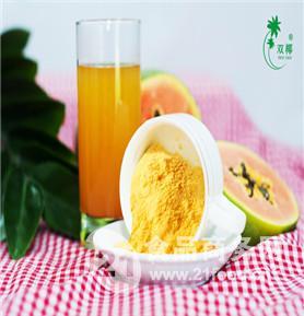 海南双椰厂家提供木瓜粉 水果粉 喷雾干燥粉