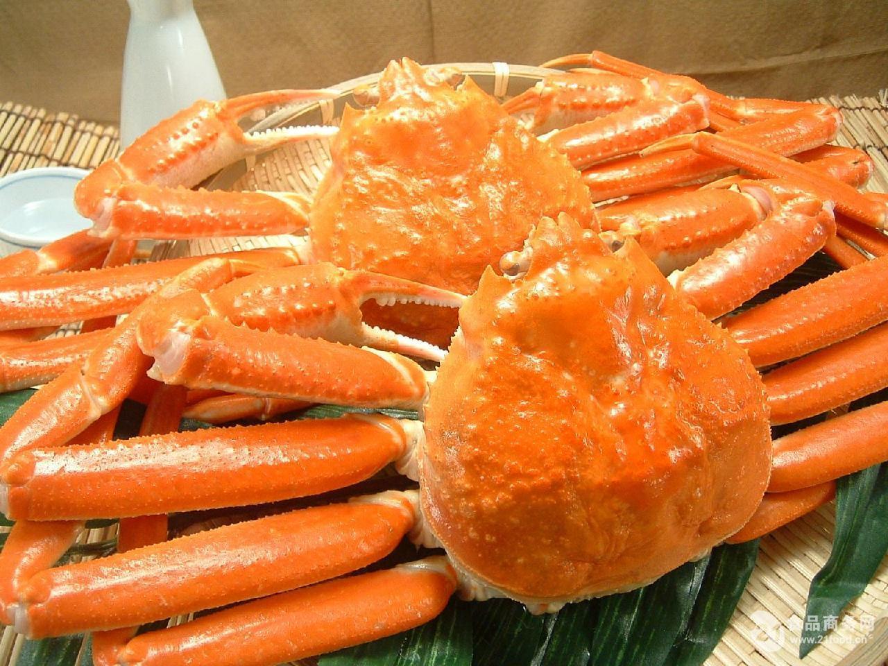 生冻雪蟹  熟冻雪蟹   整只板蟹
