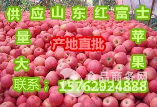山东苹果价格分析冷库红富士苹果价格