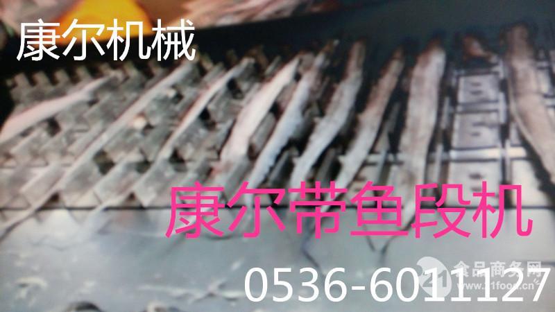 康尔改良型链条切鱼机 带鱼切段机