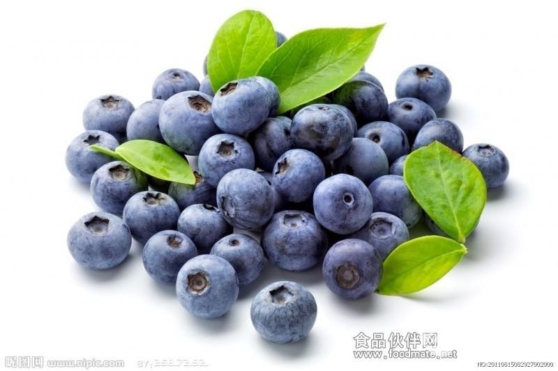 供应天然优质蓝莓浓缩汁用于果汁饮料