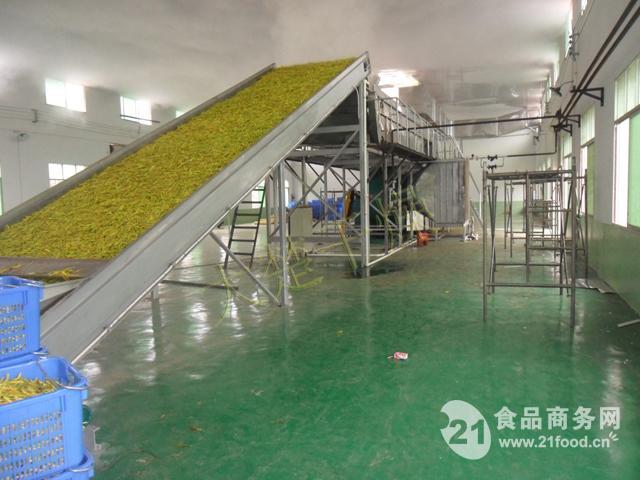 黄花菜专用带式干燥机