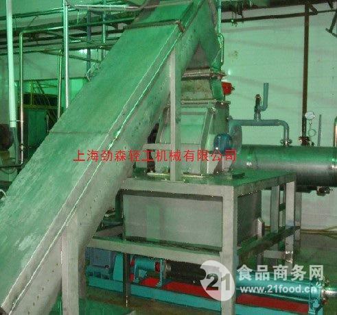 10吨浓缩胡萝卜浆生产线