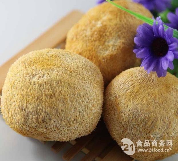 厂家供应优质猴头菇多糖