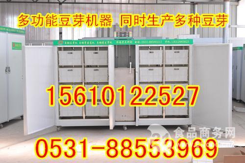 河北邢台全自动豆芽机器