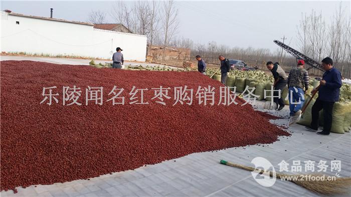 枣沙原料红枣