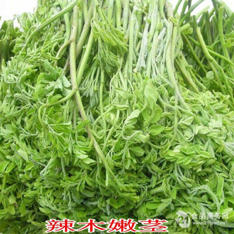 特色蔬菜稀奇之树辣木菜嫩枝 嫩叶 生态健康