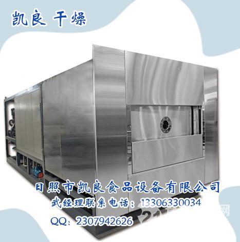 无花果草莓菠菜果蔬粮食真空冷冻冻干机新款出售经济型干燥机