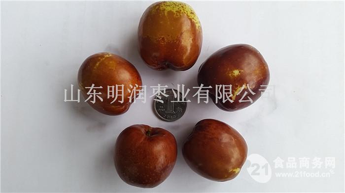 山东元红枣批发市场