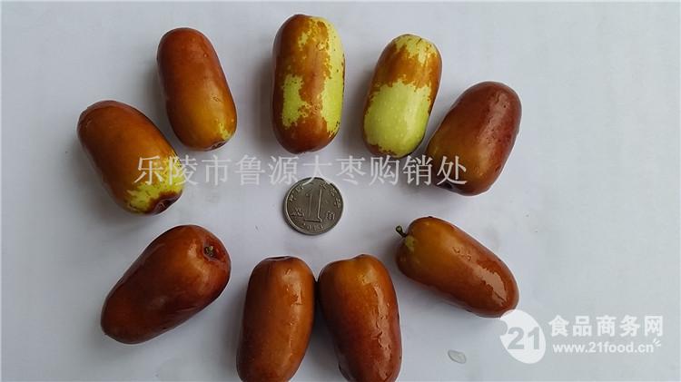 长红枣产地供应商