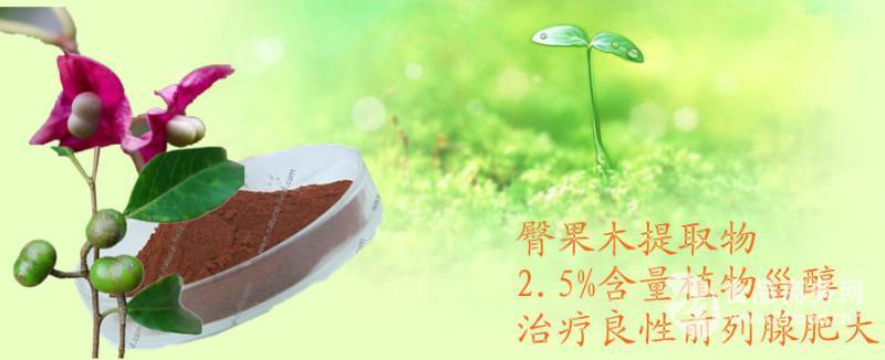 植物甾醇 植物提取物 大豆甾醇 包邮