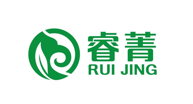 梦想队旗帜logo设计