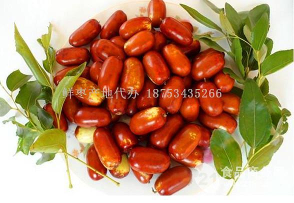 长红枣批发价格
