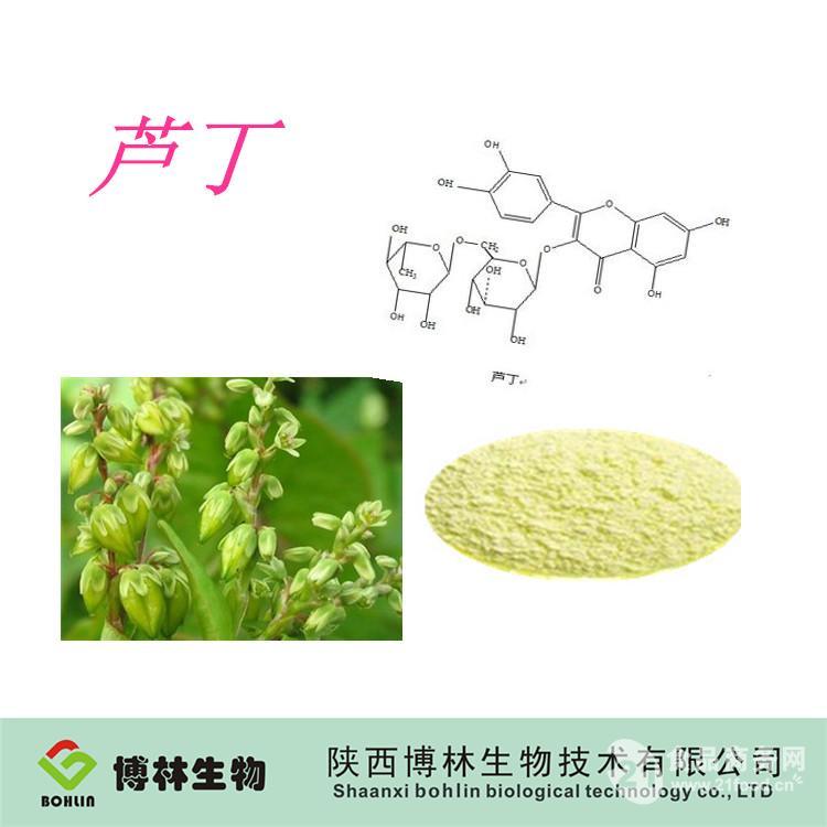 芦丁提取物 天然植物槐米提取物