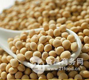 大豆粉大豆提取物大豆异黄酮营养保健食品原料