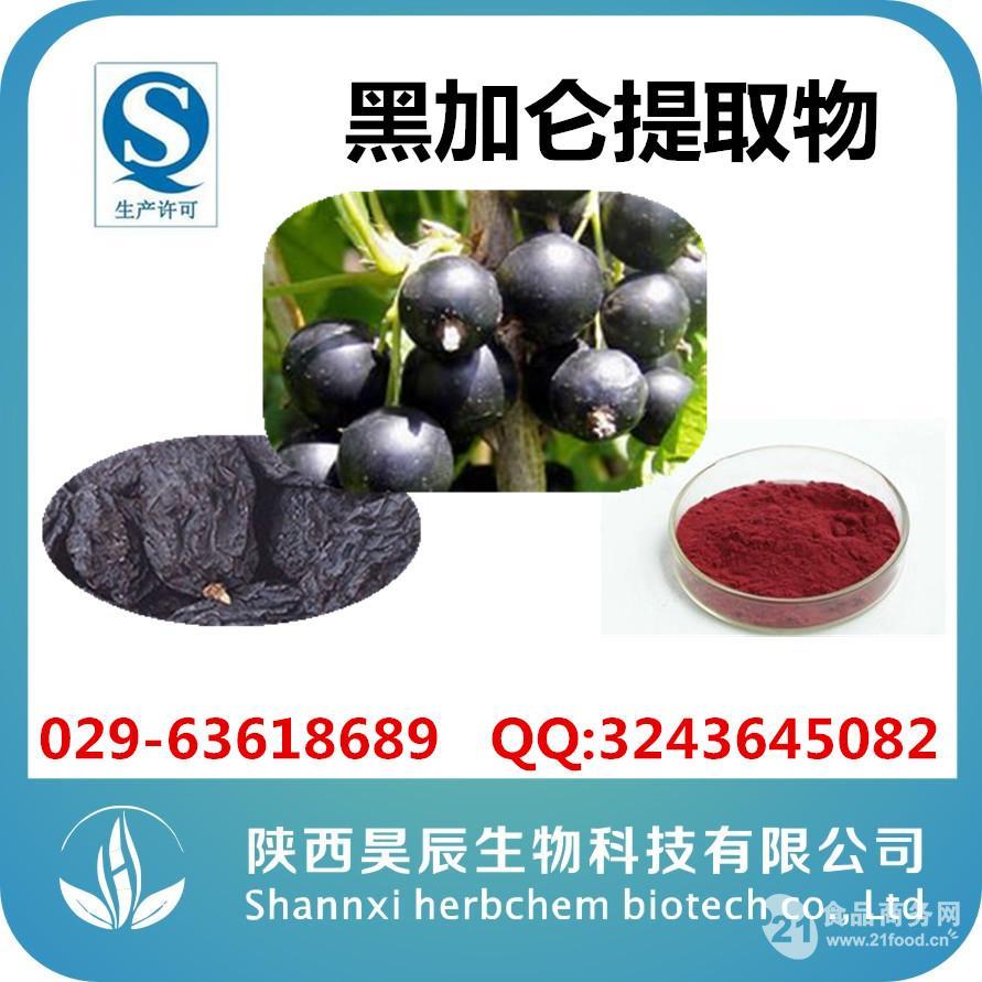 黑加仑提取物厂家供应强抗氧化剂
