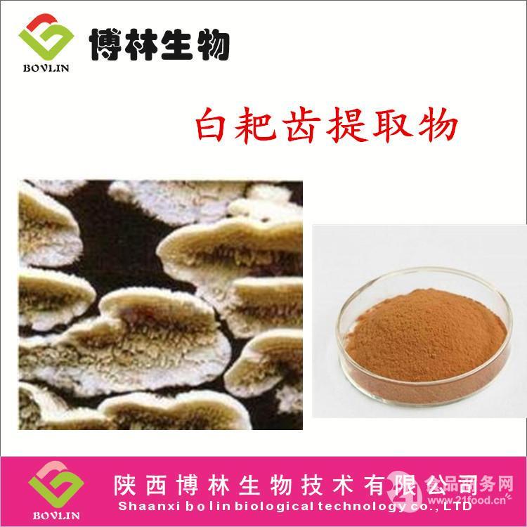 厂家直销 白耙齿菌多糖10% 天然白耙齿菌提取