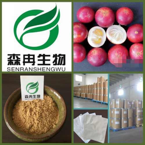 天然萃取 卡姆果提取物 10: 1  卡姆果浓缩粉