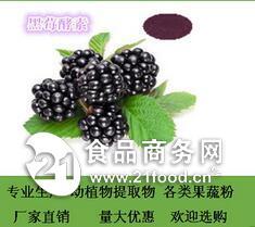 黑莓酵素 厂家直销 现货包邮