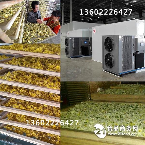 菊花烘干机-最经济最效益的菊花烘干机
