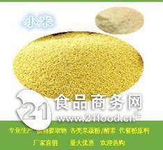 供应小米膳食纤维   小米提取物   现货包邮