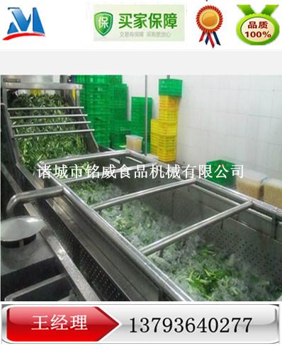 蔬菜清洗机 气泡式蔬菜清洗机价格