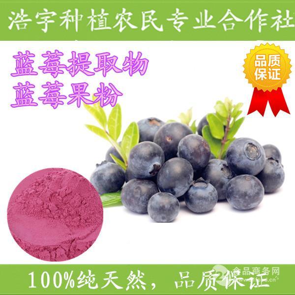 蓝莓提取物  蓝莓粉 浩宇合作社