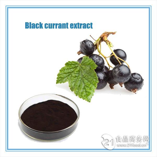 超好保健品添加 优质黑加仑提取物