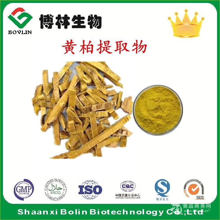 盐酸小柴碱 黄柏提取物97% 黄连素97%现货包邮