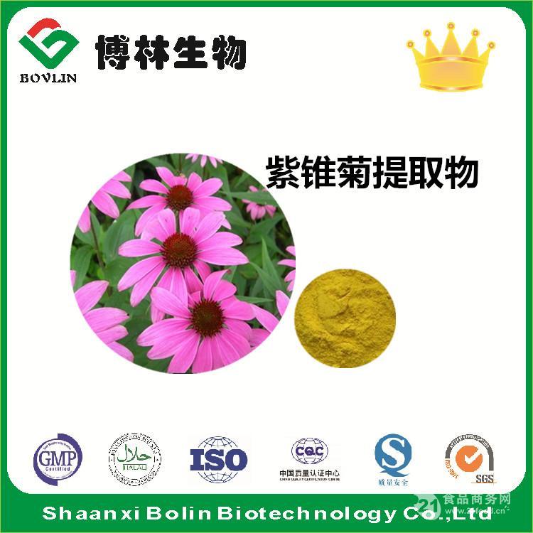 紫锥菊提取物 紫锥物菊多酚4% 现货包邮