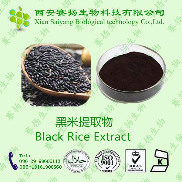 黑米提取物 10%含量 黑米花青素 天然原料提取