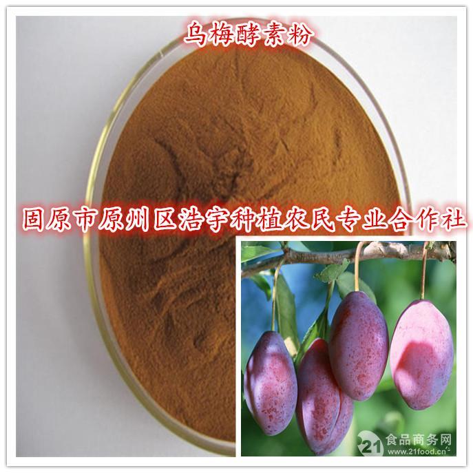 乌梅酵素粉厂家直销 乌梅酵素粉价格 现货供应乌梅酵素粉