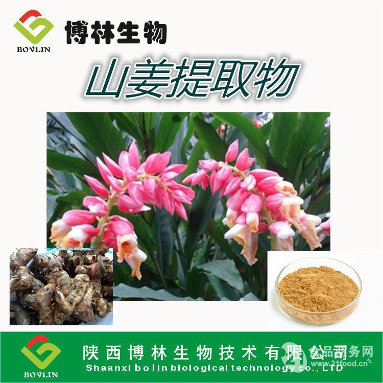 白术提取物工厂现货供应价格优惠_南京__植物