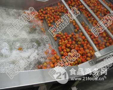 草莓清洗风干挑选线质量保证价格合理