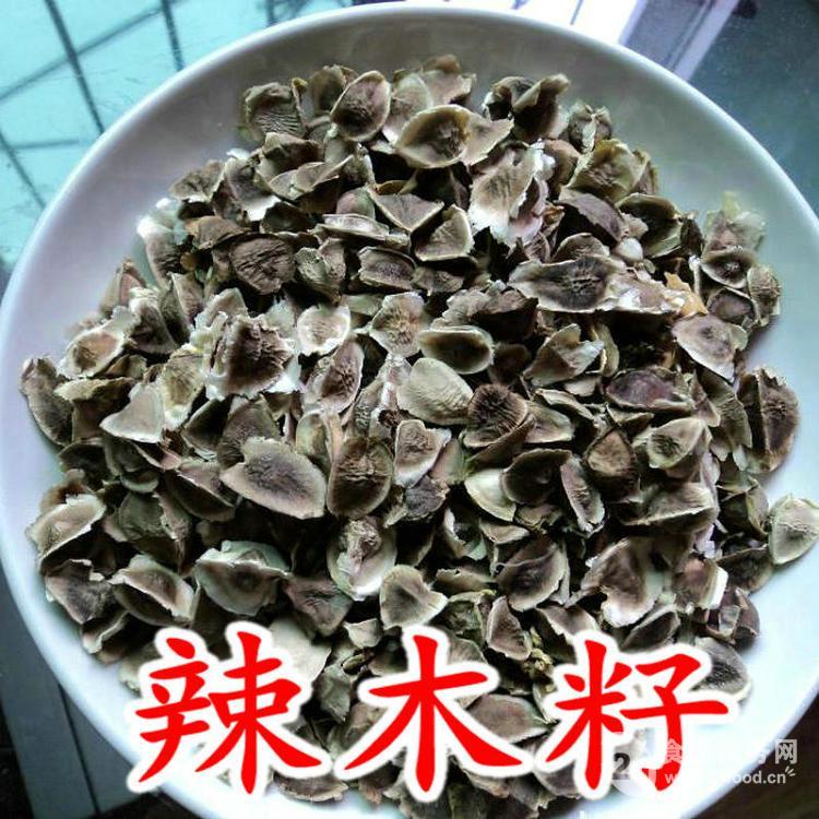 印度辣木籽pkm1树苗批发价格@昆明-食品商务网
