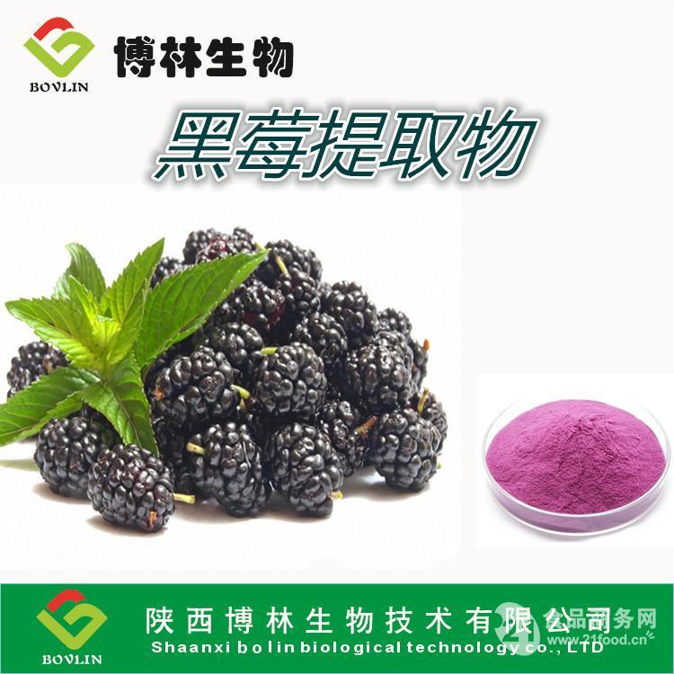 黑莓浓缩果粉 黑莓粉10:1  包邮