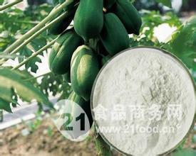 木瓜蛋白酶食品添加剂 生产厂家厂家直销价格用途用量