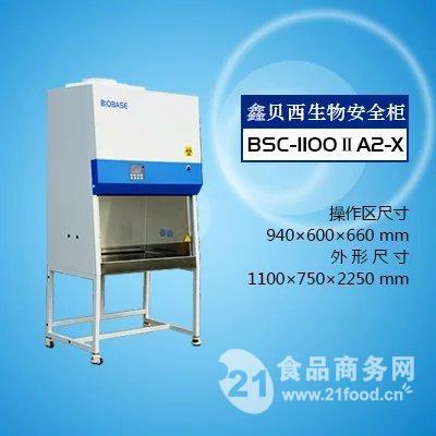 BIOBASE单人二级A2型生物安全柜生产厂家