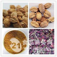 供应优质砂仁粉