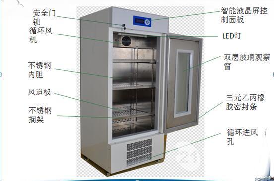 大容量微生物培养箱博科bjpx-400