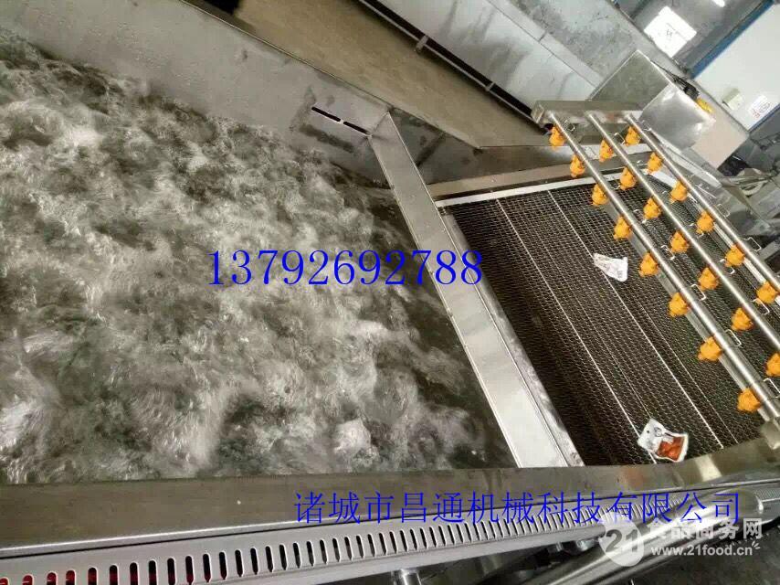 供应大型韭菜果蔬清洗流水线 高效清洗
