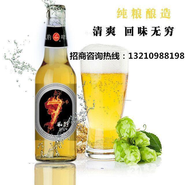 啤酒招商 夜场啤酒供应
