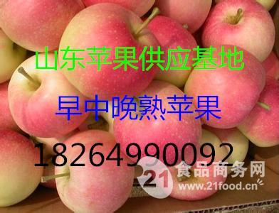 山东嘎啦苹果供应基地 产地直销