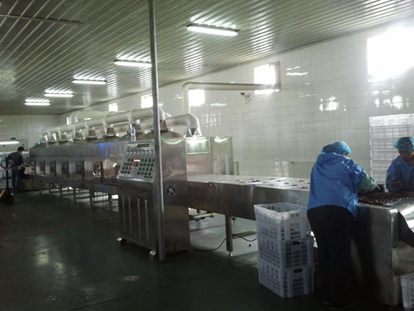 威雅斯厂家供应腊肠杀菌设备