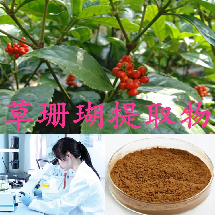 草珊瑚提取物  纯天然 优质产品
