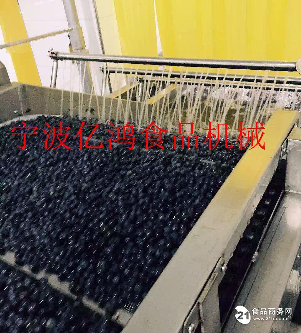 蓝莓喷淋清洗机