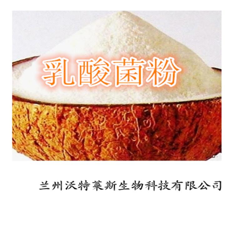 乳酸菌粉 纯天然工艺发酵 100%保证质量 厂家直邮