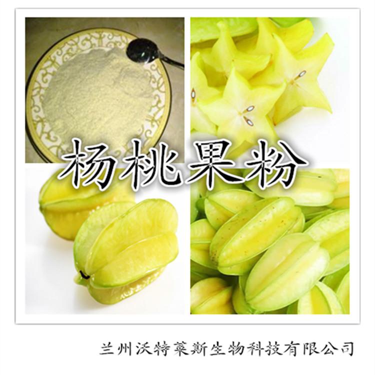杨桃速溶果粉 100%天然无杂质 优质产品 厂家直邮
