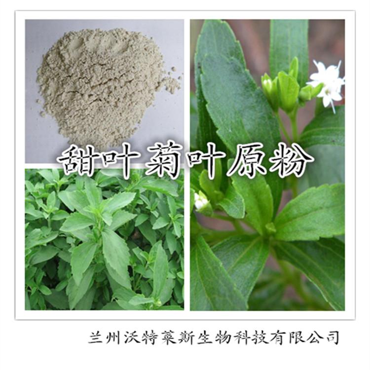 甜叶菊叶原粉 100%纯度无杂质 优质现货 厂家直邮