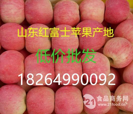 冰糖心苹果产地 山东临沂市